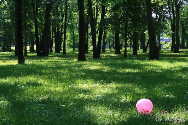 Balloon in the Park