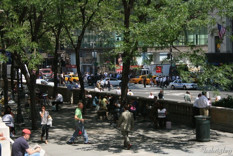 From the steps of the New York Public Library