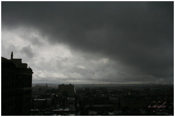 Taking South Philadelphia by Storm