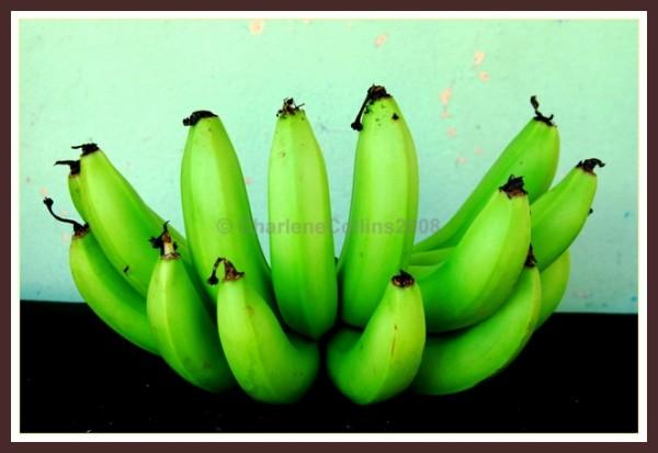 lakatan banana soon ripe