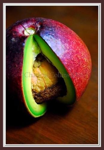 Jamaica exotic fruit Avocado pear