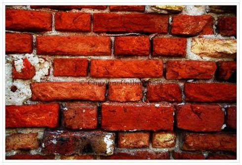 Jamaica St Elizabeth Black River brick Wal
