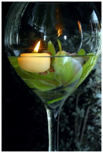 Jamaica Wine Tryall tennis