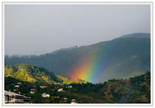 Jamaica Kingston Rainbow