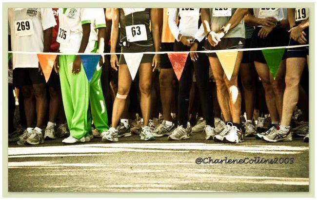 Jamaica race Hope gardens