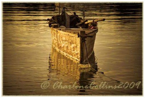 Jamaica Oracabessa St Mary fishing