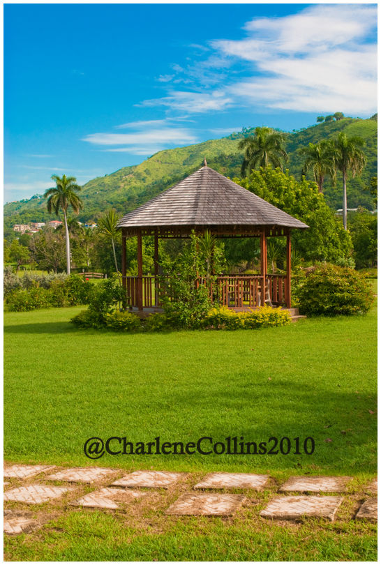 Hope Gardens Jamaica Kingston