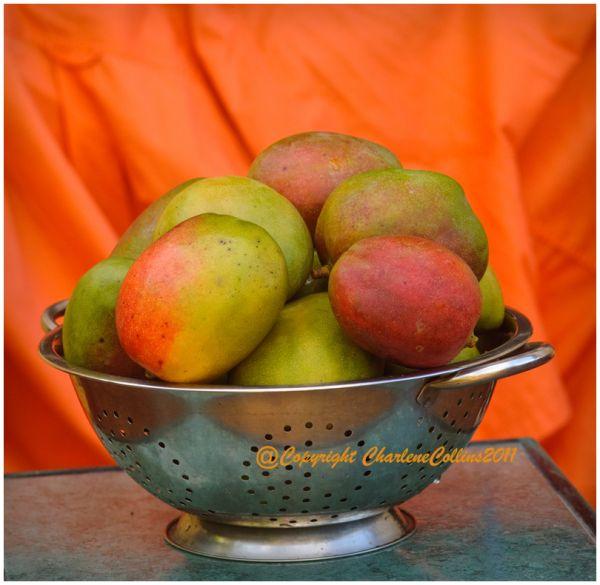 Jamaica corn organic lemon fruit vegetable Mango S