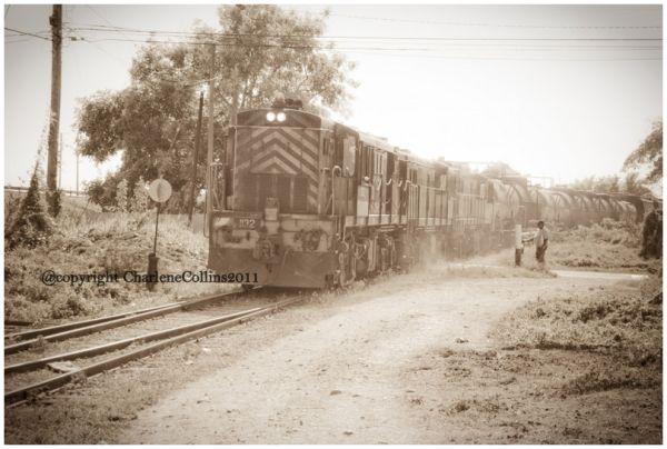 St Catherine Old Harbor Train