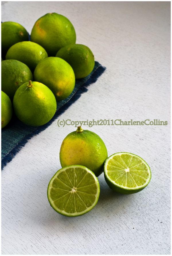 Lime Key Lime Jamaica