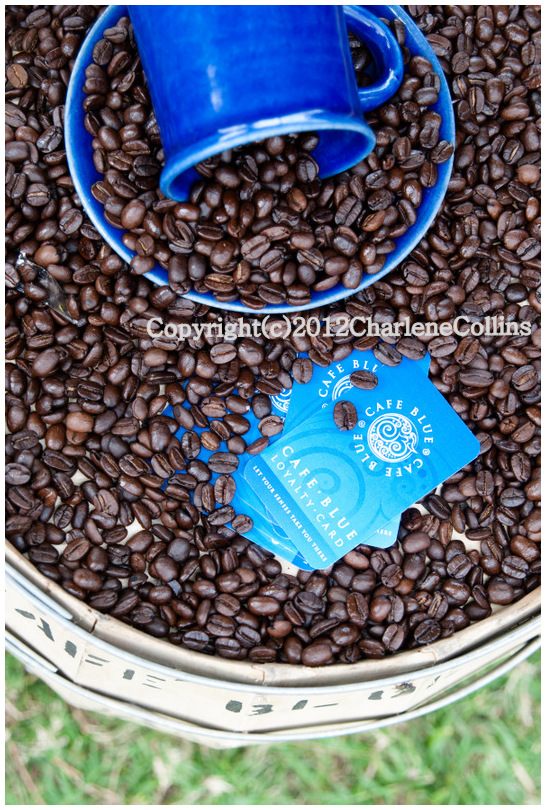 Jamaica Kingston Coffee Cups Blue Mountain