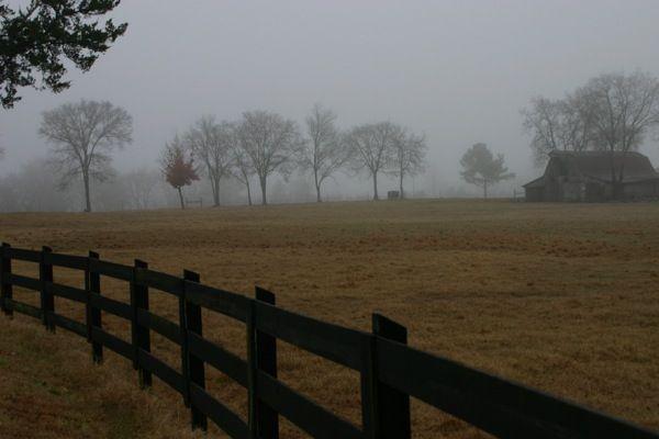 a bit of fog