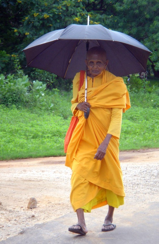 a buddhist monk, Sri Lanka