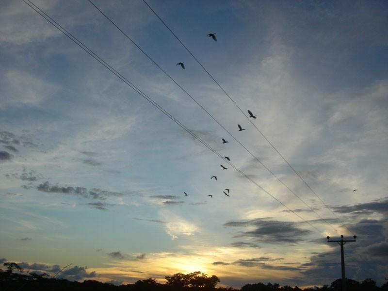 Sunset at Bundala Park