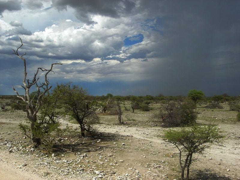 storm, africa