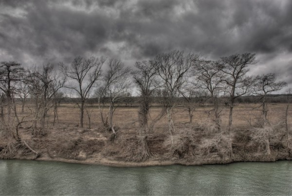 Guadalupe river bank in winter
