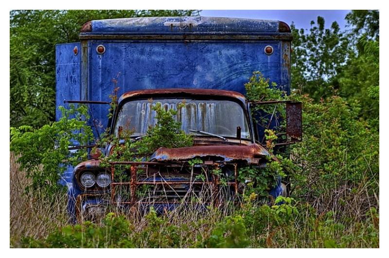 Truck in field, Seadrift, Texas