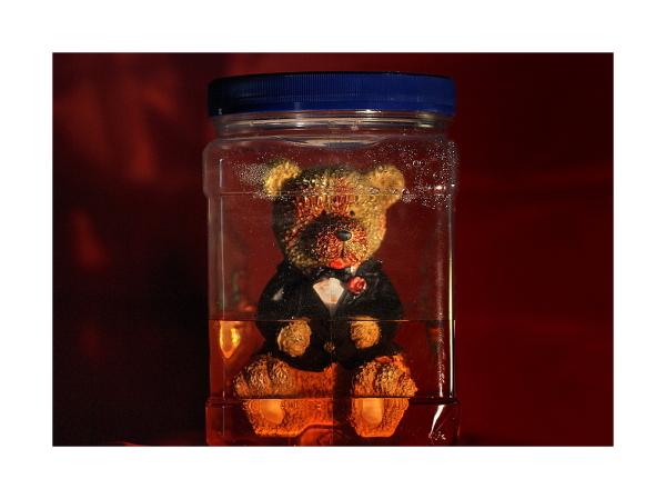 Bottled Bear