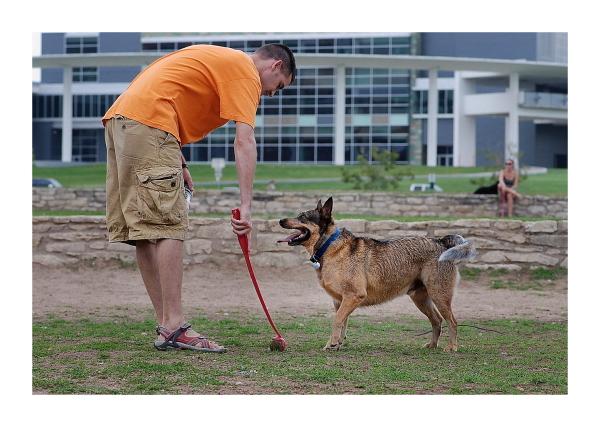 Austin Dog Park Redux: Ready, Fetch