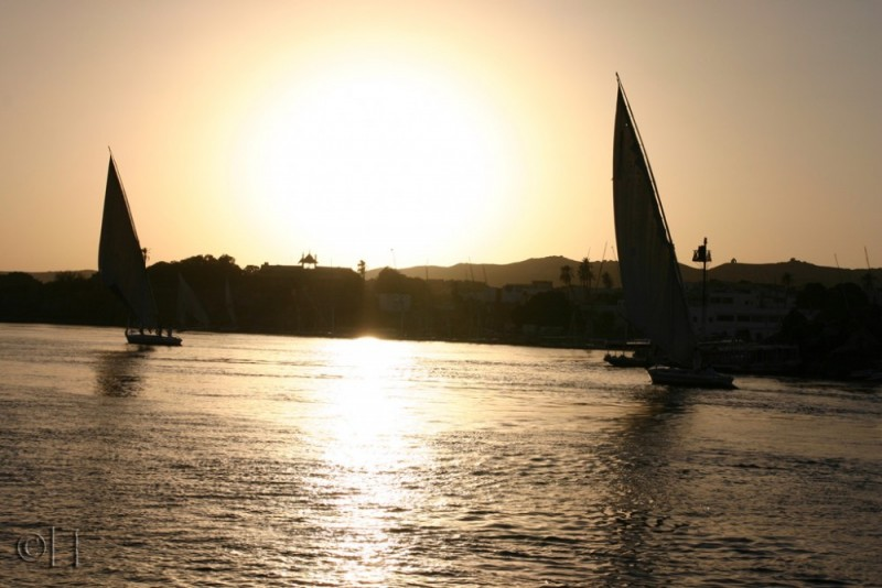 Egypt. Aswan. Nile. Feluccas at sunset