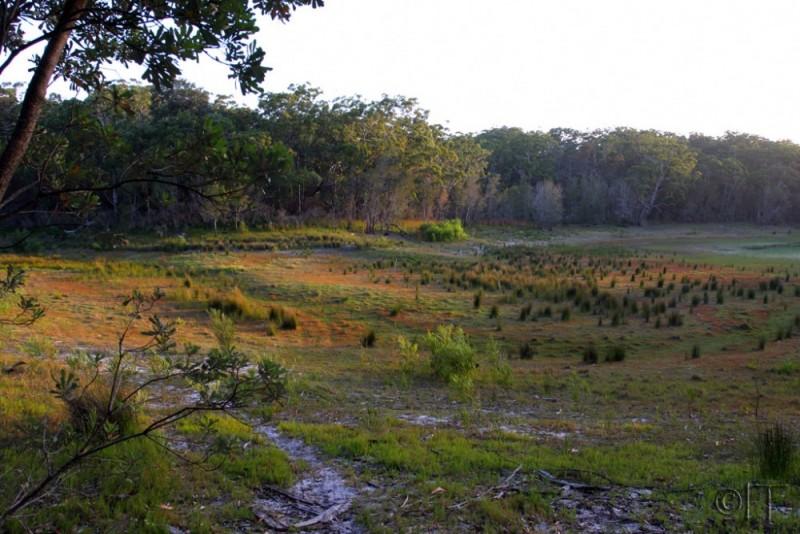 Australia. Jarvis Bay. Booderee National Park