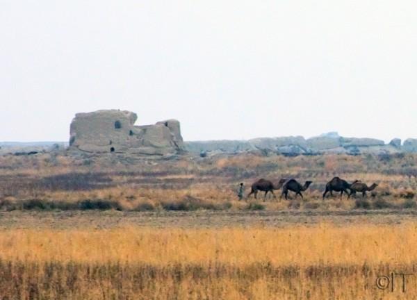 Turkmenistan. Merv