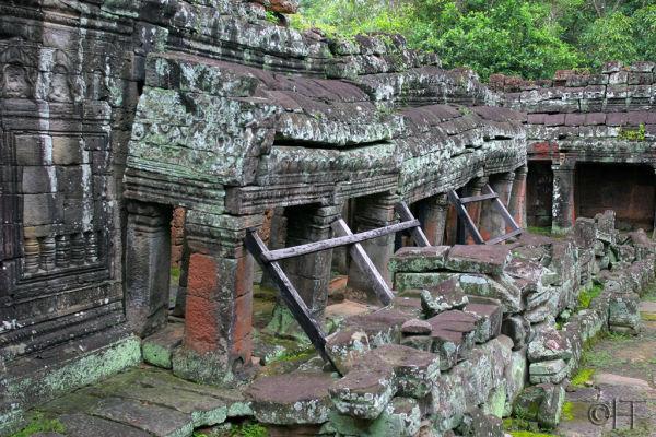 Cambodia. Angkor. Ta Prohm 4.