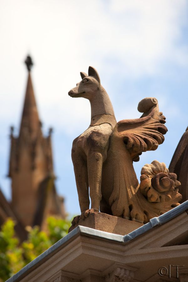 Australia. Sydney. St Mary's Cathedral