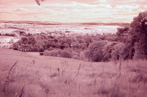 kelso infrared
