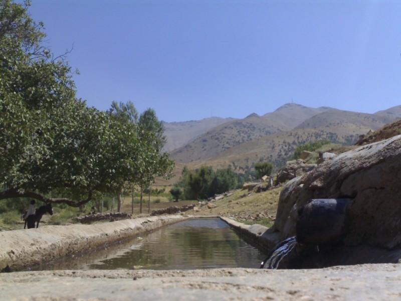 kurdestan baneh (village siahdare olya)