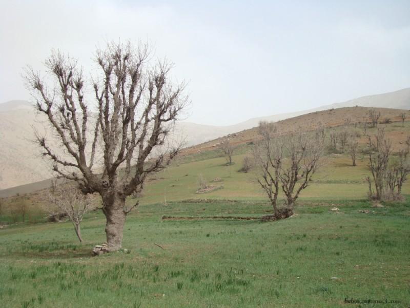 iran kurdestan baneh mineral village sawan