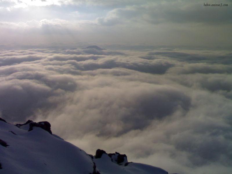 مه خلیظ ته م و مژ