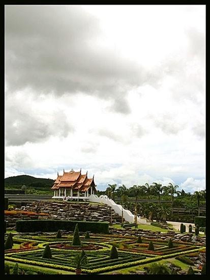 A shot from the rose garden of pattaya, thailand