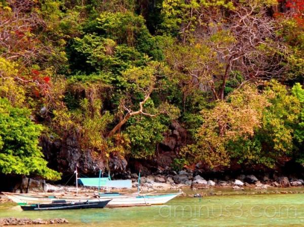 Limestone cliffs Philippines