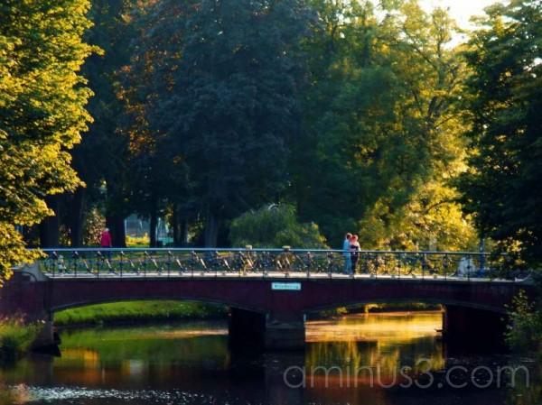Bridge over Delpratsingel Breda