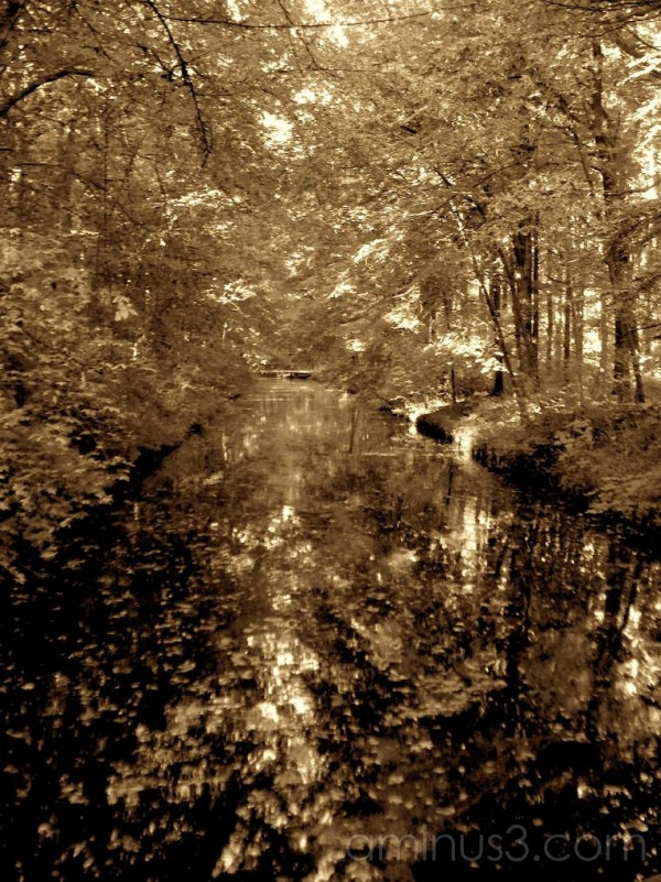 Mono image of canal