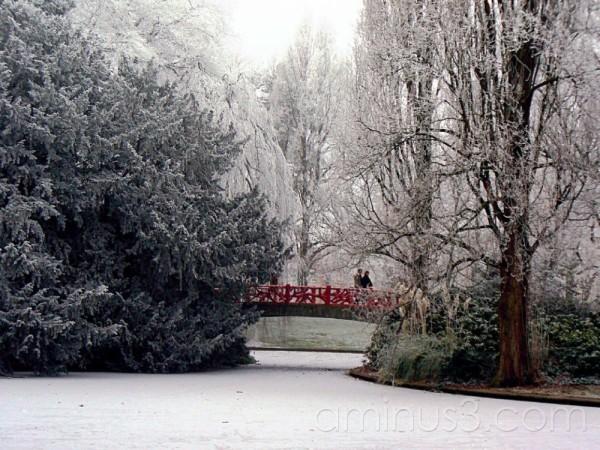people crossing bridge over frozen lake