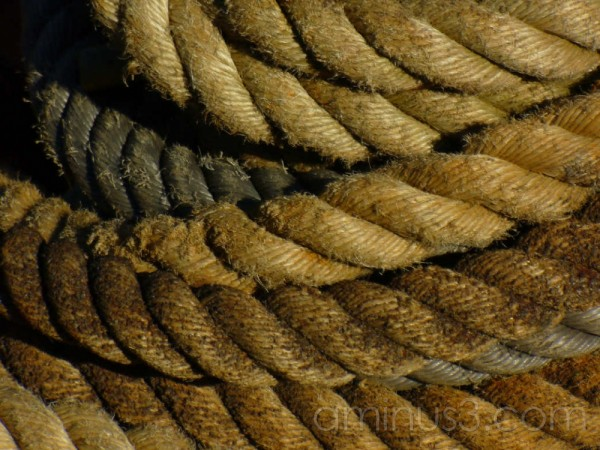 closup of rope ships museum rotterdam