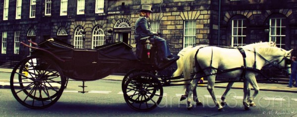 man driving horse drawn carriage Edinburgh