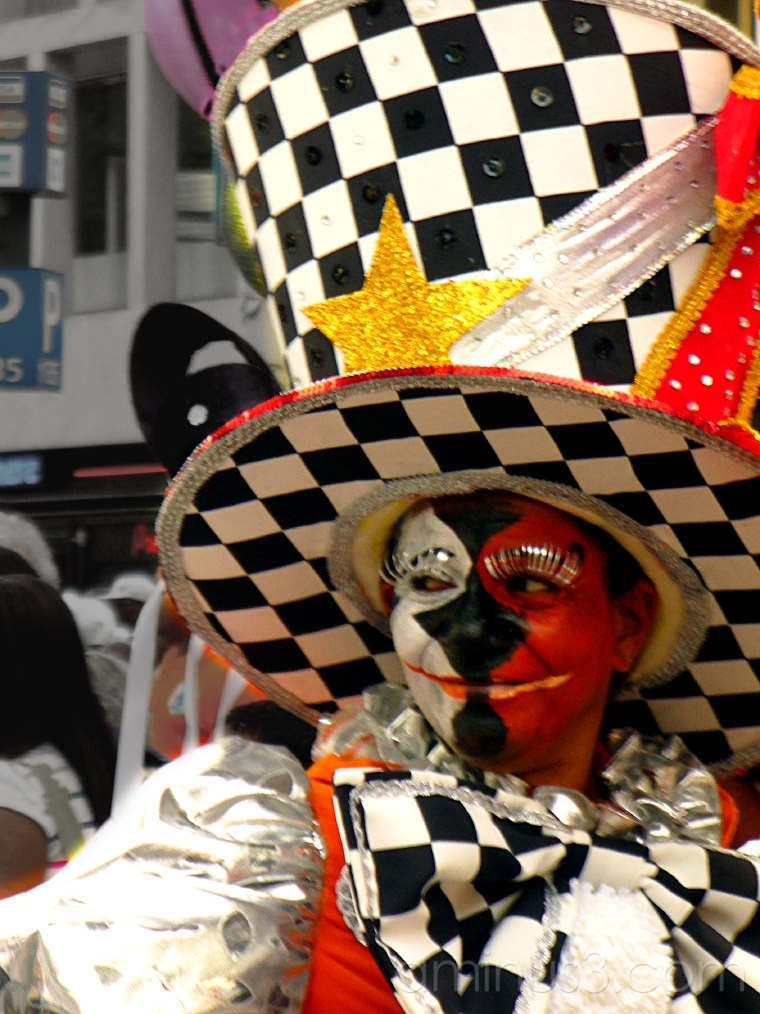 Carnival participant in Spectacular finery