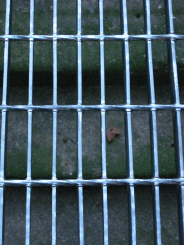 grate over mossy stair