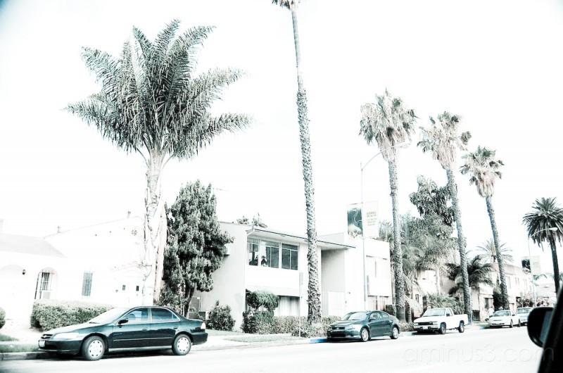 Along the streets Long Beach