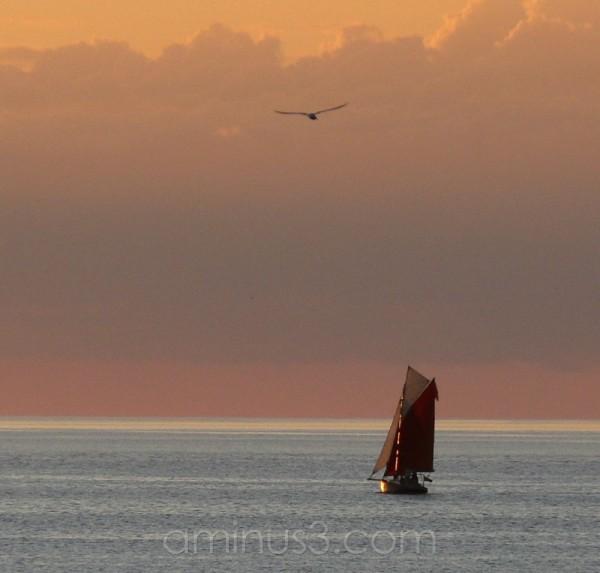 Sailing the Sunset.