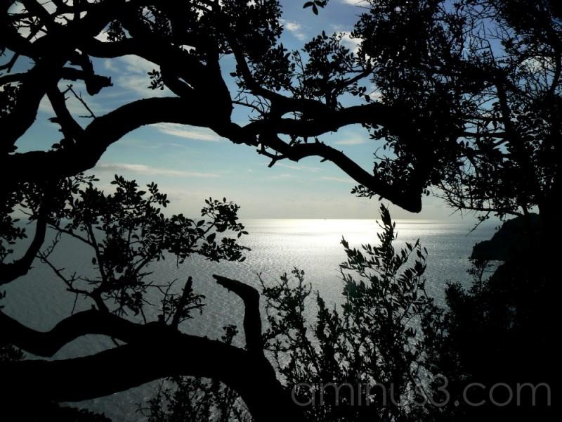 Far far away on the Isle of Capri
