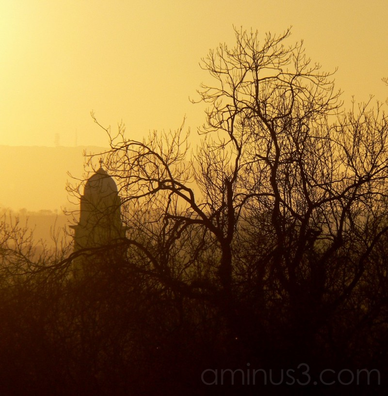 St. Mary's  through the trees at sunset.