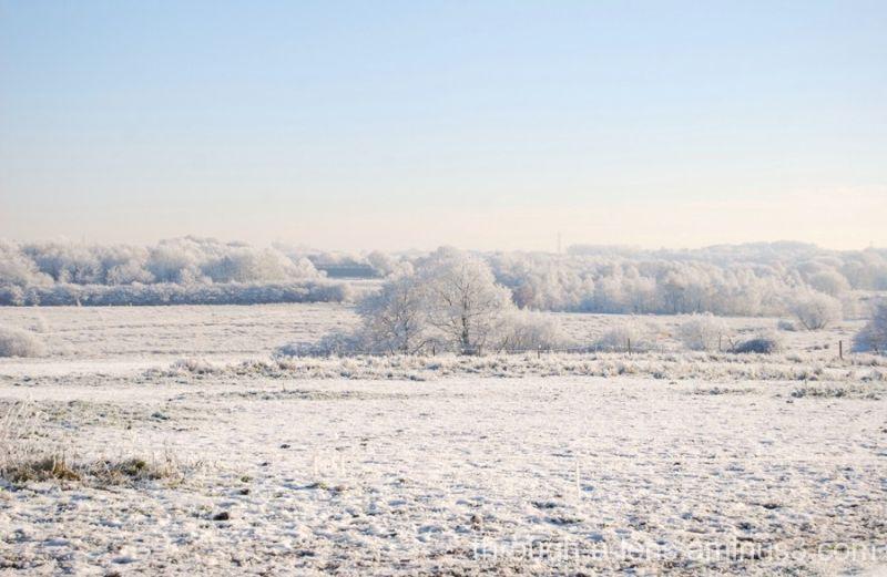 December Hoar Frost