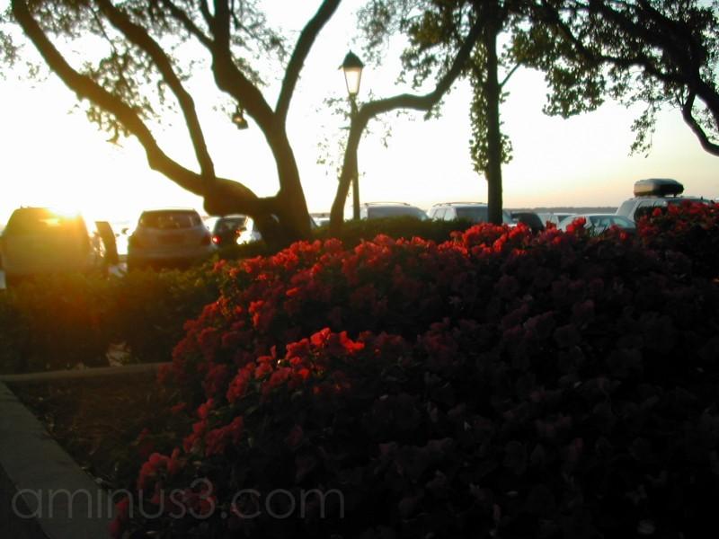 Sunset in SC