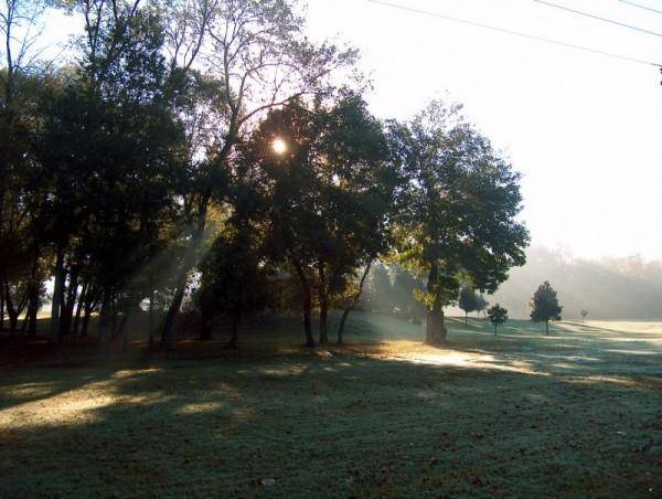 sun burns morning dew, park, newton, nc, vickie