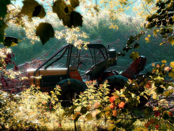 sun shines on old tractor at southside park, nc