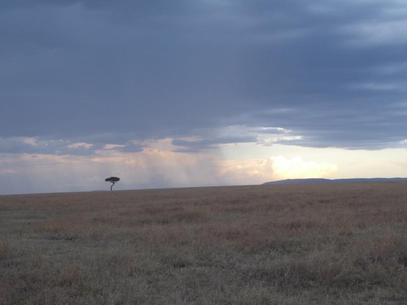Landscape in Massi Mara